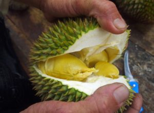 Butter Durian in George Town Penang