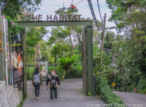 the Habitat entry Penang Hill