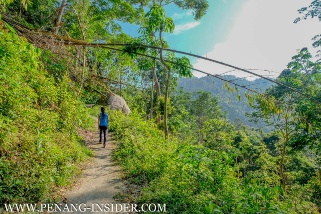 Penang Hill secret hiking trail