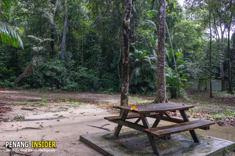 teluk kampi camp ground penang national park teluk bahang