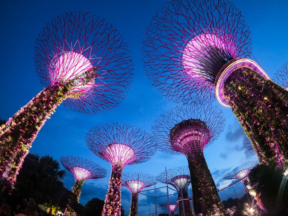supertree grove singapore in one day