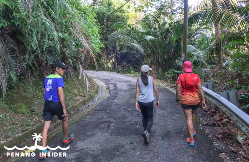 hikers walk on the paved road at Bukit Larut in Taiping