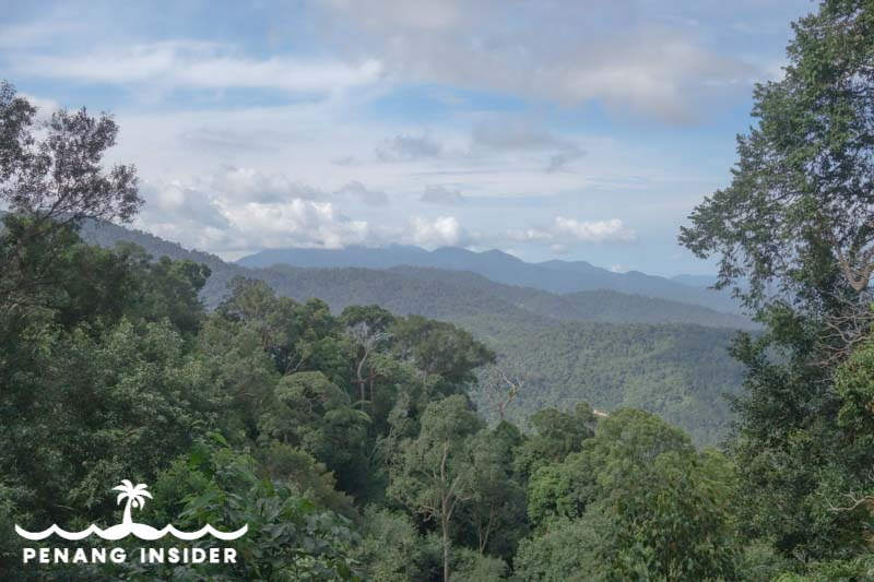 panorama from Bukit Larut in Taiping